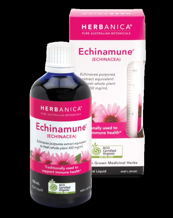 Remedies Web Echinacea